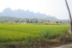 mashan_rural_006