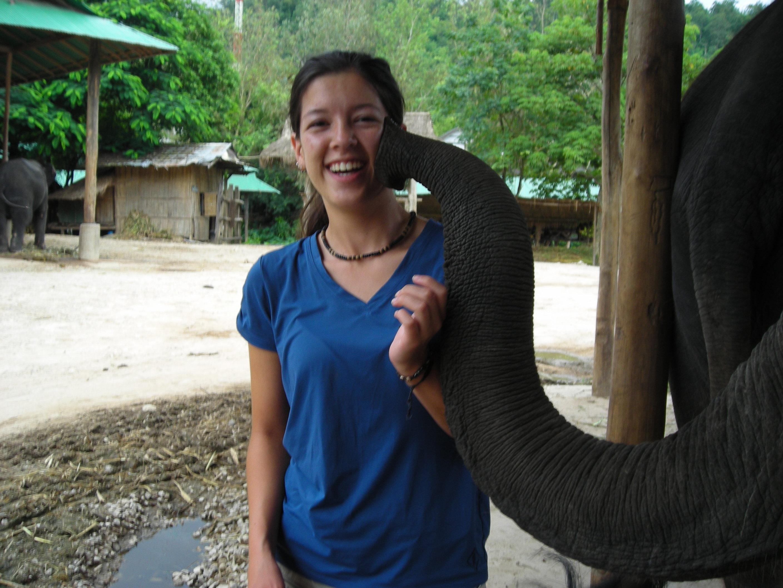 Thailand Elephant Camp Chiang Mai Kiss
